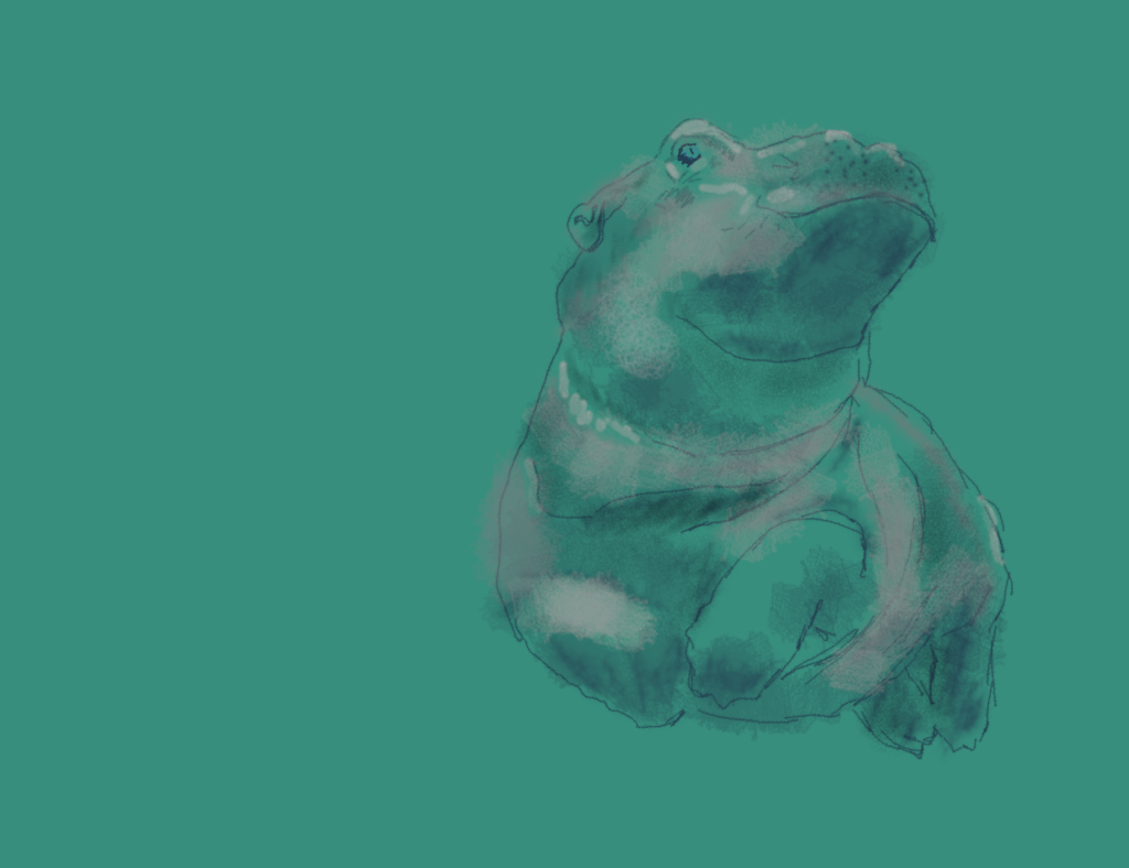 Digital Drawing Fiona the Baby Hippo